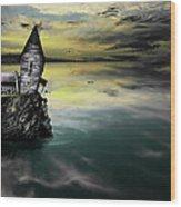 Seagull Island Wood Print