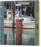 Seagull Triptych Wood Print