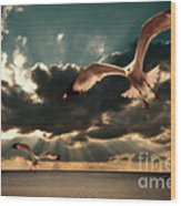 Seagulls In A Grunge Style Wood Print by Meirion Matthias