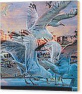 Seagulls On Brighton Pier Wood Print