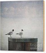 Seagulls Wood Print by Priska Wettstein