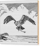 Seahawk Dinnertime Wood Print