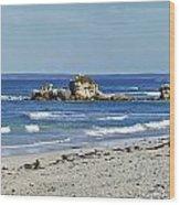 Seal Bay Beach Wood Print