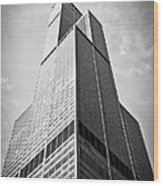 Sears-willis Tower Chicago Wood Print by Paul Velgos