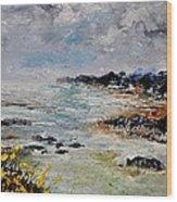 Seascape 452160 Wood Print