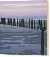Seascape At Dusk With Pillars In Wood Print