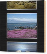 Seascape Triptych Wood Print