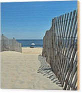 seashore 100 Cape Henlopen Beach walkway Wood Print