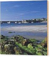 Seashore, Portnablagh, County Donegal Wood Print