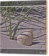 Seashore Scene Wood Print