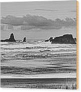 Seaside By The Ocean Wood Print