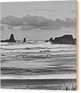 Seaside By The Ocean Wood Print