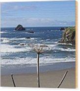 Seaside Solitude Wood Print