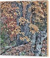 Season Change At Lost Maples Wood Print