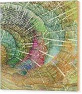Season Of The Shell Wood Print