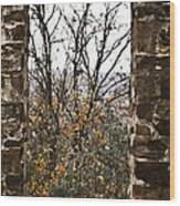 Seasonal View Wood Print