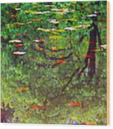 Seasons Reflect Wood Print