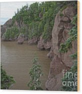 Seastacks At Hopewell Rocks Wood Print