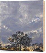 Sedgeley Tree Wood Print