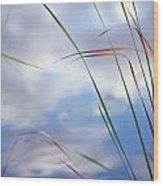 Sedges And Sky Wood Print