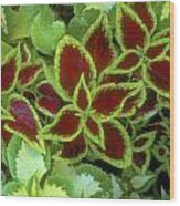 Sedona Floral Wood Print