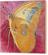 Self Esteem Butterfly Wood Print