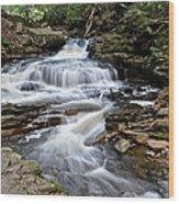 Seneca Falls Wood Print