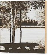 Sepia Picnic Table Ll Wood Print