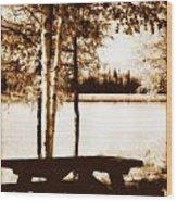 Sepia Picnic Table Lll Wood Print