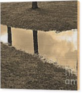 Sepia Silhouetted Reflections  Wood Print