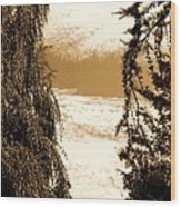 Sepia Sky 2 Wood Print