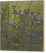 September Morning Wood Print