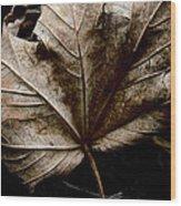 September Wood Print by Odd Jeppesen