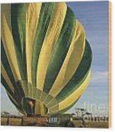 Serengeti Hot Air Baloon Inflating Wood Print