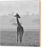Serengeti Morning Wood Print