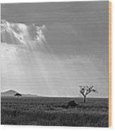 Serengeti Sunlight  Wood Print
