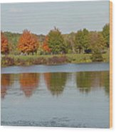 Seven Lakes State Park Mi Wood Print by Margrit Schlatter