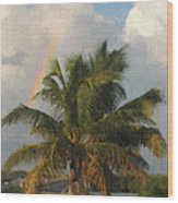 Seven Mile Rainbow Wood Print