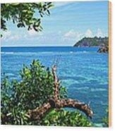 Seychelles Wood Print by Jenny Senra Pampin