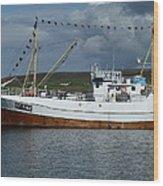 Sf-5-nv Visiting Shetland Wood Print by George Leask