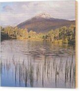 Sgurr Na Lapaich From Loch Salach A Ghiubhais In Glen Affric Wood Print
