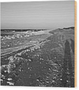 Shackleford Beach Morning Wood Print