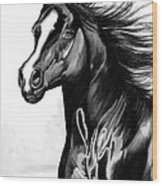 Shading Of A Horse In Bic Pen Wood Print
