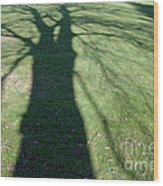 Shadow Of A Tree On Green Grass Wood Print