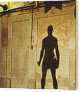 Shadow Wall Statue Wood Print
