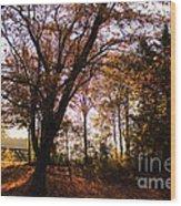 Shadowgate Wood Print