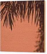 Shadows Of A Palm Wood Print