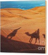 Shadows Of Desert Wood Print