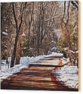 Shadowy Path Wood Print