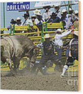Rodeo Shaking It Up Wood Print